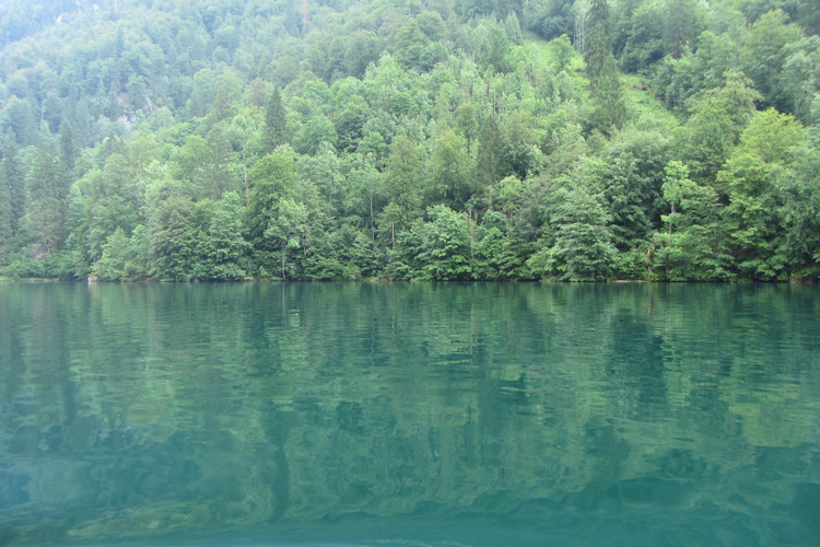 Blue-green water in the Königssee