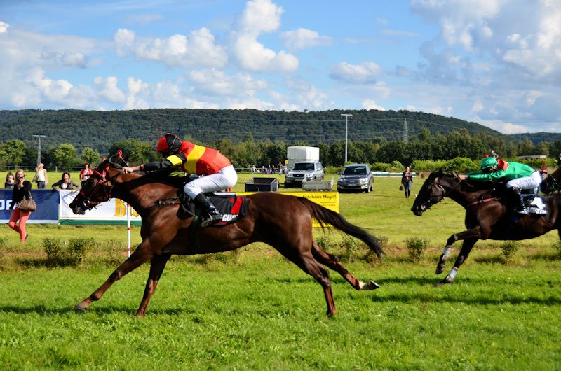 The winner at the finish at the Miesau horse races (Pferderennen)